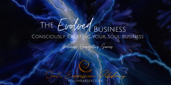 The Evolved Business - Consciously Creating Your Soul Business