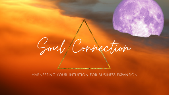 Soul Connection - Harnessing your Intuition for Business Success